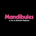 KINO PAVASARIO FILMAS TORO / MANDIBULES NELEGALIAI PASKLEISTAS INTERNETE